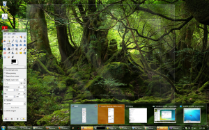 Aero Peek: Activate Window